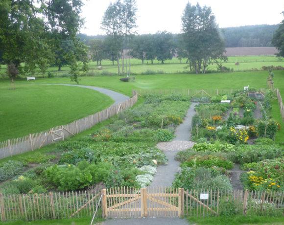 Offene Gärten 2019 – Gut Zichtau