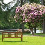 """Besuchen Sie die historischen Parks """"Gartenträume"""" in Sachsen-Anhalt"""